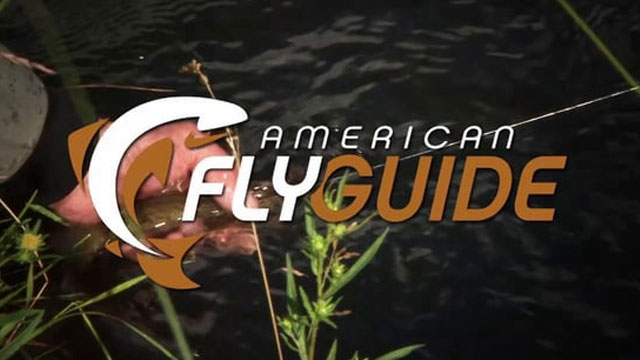 American Fly Guide