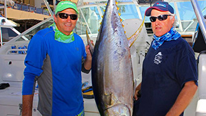 A freshly caught yellowfin tuna